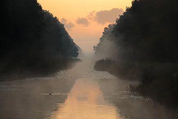Morgendämmerung von cindy kuiphuis