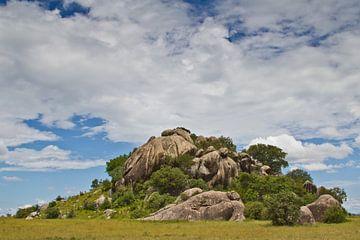 Kopje in de Serengeti van Peter van Dam