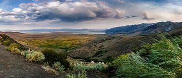 Mono Lake von Erik Bouma