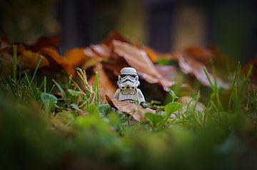 Stormtrooper im Herbst von Willi Schubert