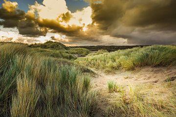 Duinlandschap  von Henk van den Brink