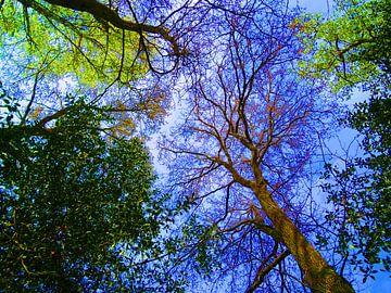 Tree Magic 160