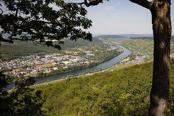 Panoramablick auf das Moseltal und die Stadt Bernkastel-Kues von Reiner Conrad