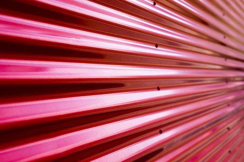 Red II van