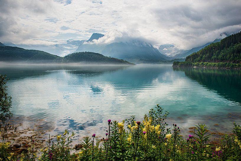 Reflectie van bergen en wolken 2 van Ellis Peeters