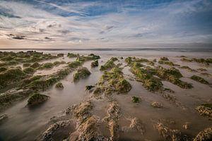 Zee Landschap van Jacqueline Lopez Perez