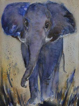 De blauwe olifant van Christine Nöhmeier