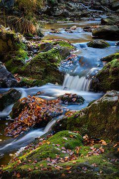 Flowing water van Wim van D