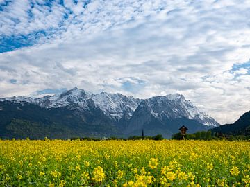 Blick zur Zugspitze bei Farchant von Andreas Müller