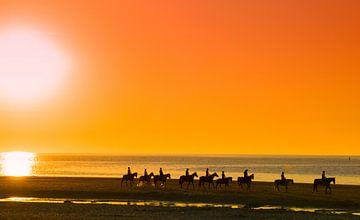 Paardrijden langs het strand tijdens zonsondergang