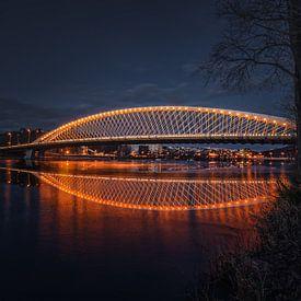 Troja brug Praag, Tsjechië van Dennis Donders