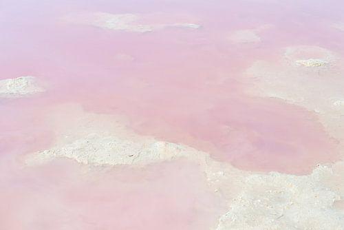 Roze water in het zoutmeer van Torrevieja, Spanje van