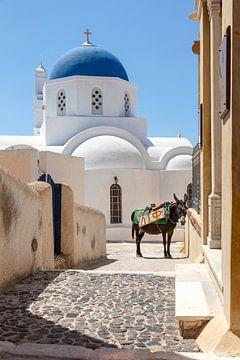 Rue d'un village de l'île grecque de Santorin, avec une église blanc-bleu et un âne.