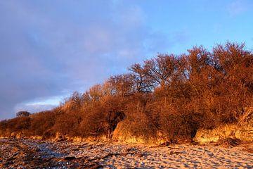 Winter avondzon van Ostsee Bilder