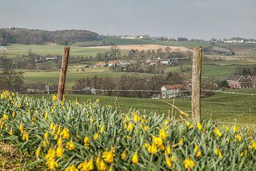 Voorjaar in de omgeving van Epen von John Kreukniet