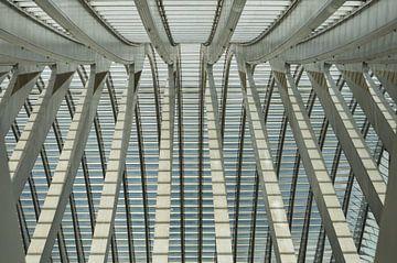 lijnen in het dak van treinstation Luik Guillemins van Patrick Verhoef