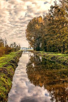 Herbst im Alblasserbos von Rob van der Teen