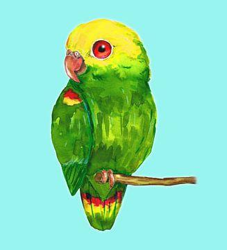 Geelkopamazone papegaai van Bianca Wisseloo