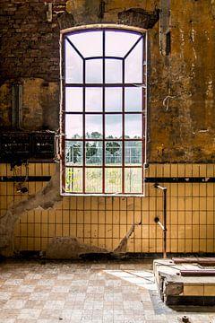 Fenster einer alten, baufälligen Fabrik von SRF