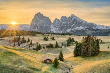 Alpe di Siusi in de herfst van Michael Valjak
