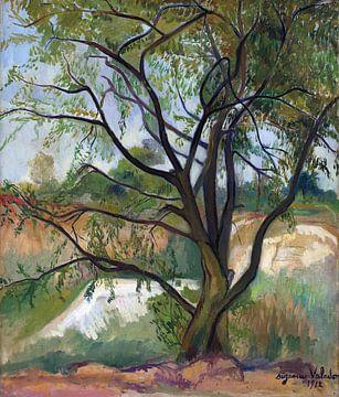 Der Baum, Suzanne Valadon, 1912 von Atelier Liesjes
