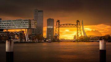 Rotterdam Iconen van Tim Kreike
