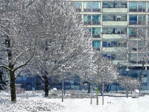 Winterbeeld Lijnbaanhoven
