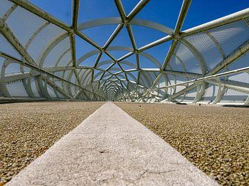 Symmetrie von Thomas Hofman