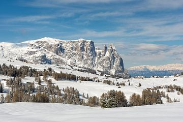 Winter op de Alpe di Siusi van Michael Valjak