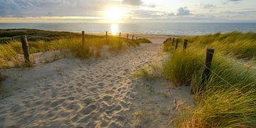 Sonne und Meer am Strand von Dirk van Egmond