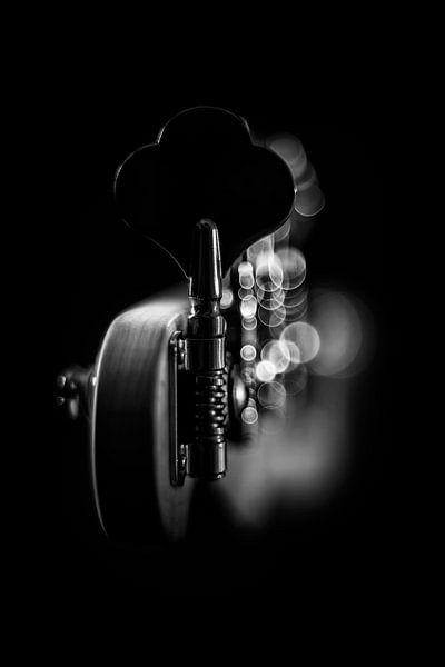 Geweldig lichtspel op een basgitaar II van Bob Daalder