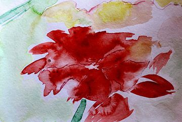 Feuerblume  von M.A. Ziehr