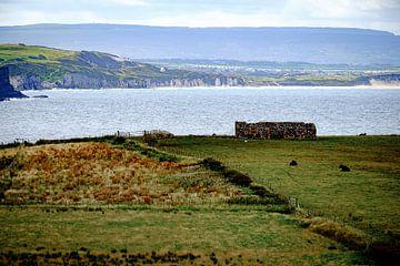 Langs de kust van Noord-Ierland von H Verdurmen