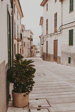Mallorca steegje van Amber den Oudsten