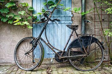 Stilleben mit Fahrrad.