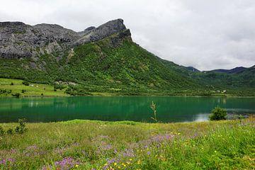 Eidsfjorden van Gisela Scheffbuch