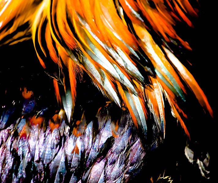 Feathers I von lieve velle