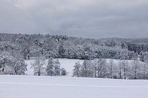 Het Rijnland kan ook een winterdroom zijn van Harald Schottner