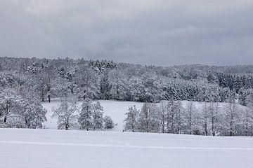 Das Rheinland kann auch ein Wintertraum werden von Harald Schottner