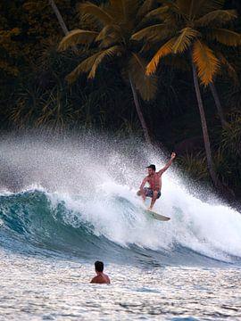 The Perfect Wave van Ward Jonkman