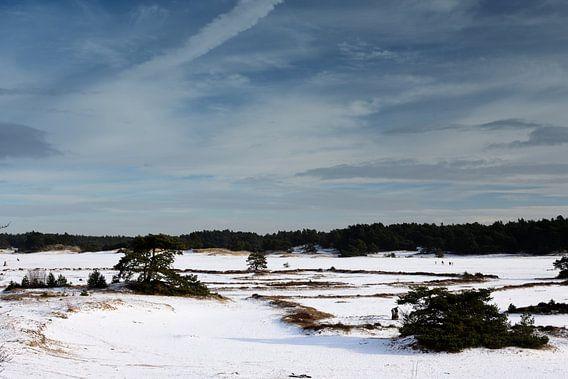 Een wijds sneeuwvlakte
