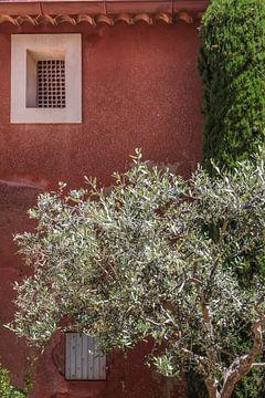L'olivier dans la vieille ville de Roussillon sur Christian Müringer