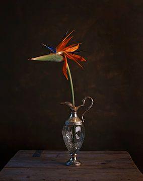Paradijsvogel bloem van Anouschka Hendriks