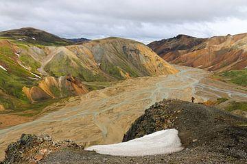 Wild IJsland van Jan Bakker