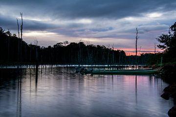 Sonnenuntergang über dem Brownsberg beim Brokopondo-Stausee von Ton de Koning