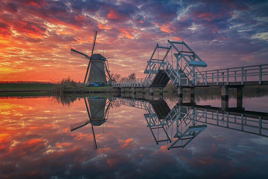Last moments of light (2) - Kinderdijk
