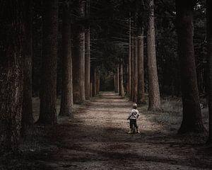 kleine jongen alleen in een eng bos van Jan Hermsen