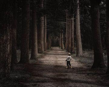 kleine jongen alleen in een eng bos von Jan Hermsen