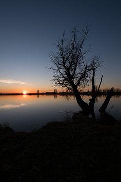 Zonsondergang met boom en meertje van Moetwil en van Dijk - Fotografie