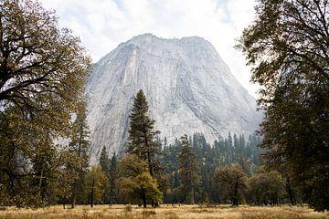 Yosemite von Ingeborg van Bruggen